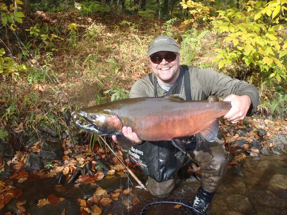 Coho salmon fishing Salmon River, Pulaski, New York